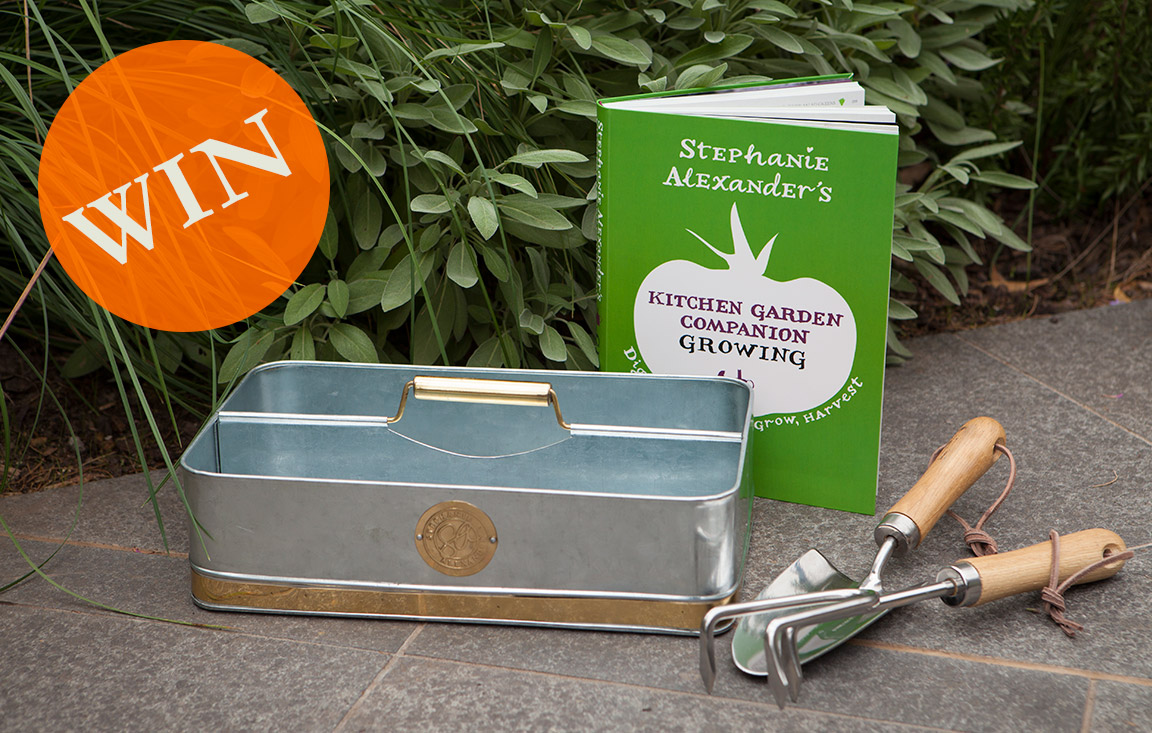 penguin-growing-book-garden-tools-giveaway